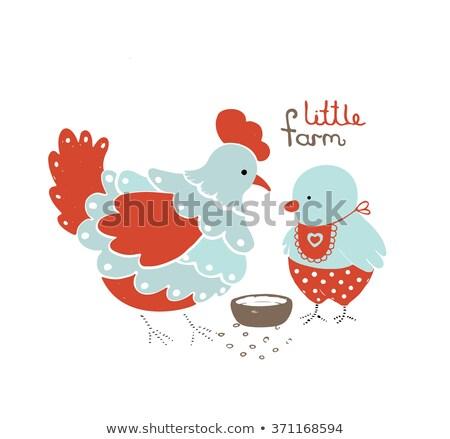 Vektor madár etetés csirke fiatal étel Stock fotó © Morphart