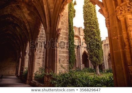 Abdij wijk Cyprus gras groene kerk Stockfoto © Kirill_M