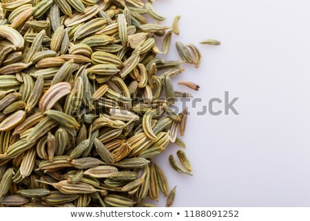 pile of organic fennel seed foeniculum vulgare stock photo © ziprashantzi