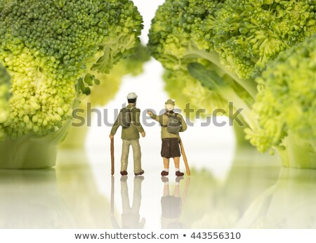 miniature figures walking on broccoli trees  stock photo © compuinfoto