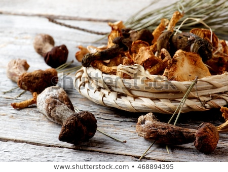 arrangement of dried mushrooms stock photo © zhekos