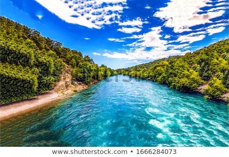 zöld · dombok · kék · folyó · illusztráció · izolált - stock fotó © bluering