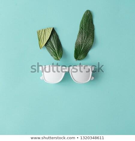 face leaf concept stock photo © krisdog