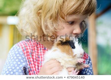 gyermek · tengerimalac · portré · nevet · kislány · fehér - stock fotó © is2
