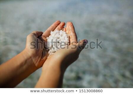 Trocken Salz See Unterseite voll Textur Stock foto © Zhukow