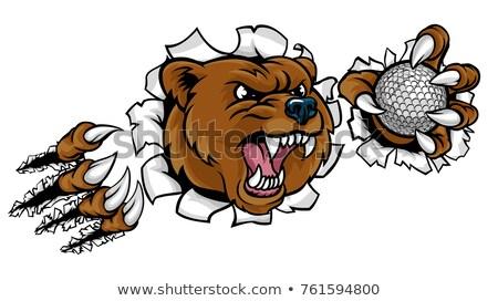 Bear Holding Golf Ball Breaking Background Stock photo © Krisdog