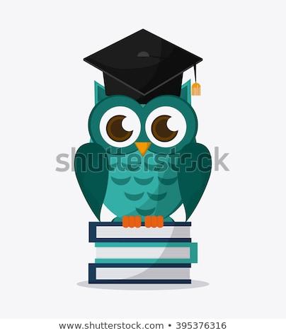 rajz · bölcs · bagoly · érettségi · sapka · diploma - stock fotó © krisdog