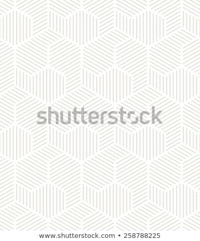 geometrik · süs · çizgili · vektör · tek · renkli - stok fotoğraf © samolevsky