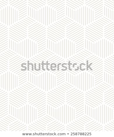 Foto stock: Ornamento · a · rayas · vector · sin · costura · monocromo · patrón