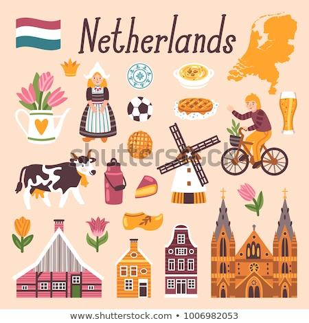 Traditionellen holland Symbol Landschaft ein Stock foto © Olena