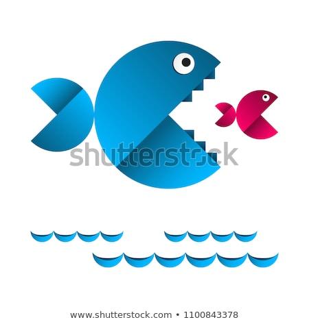Een vis ander voedsel Blauw grappig Stockfoto © djdarkflower