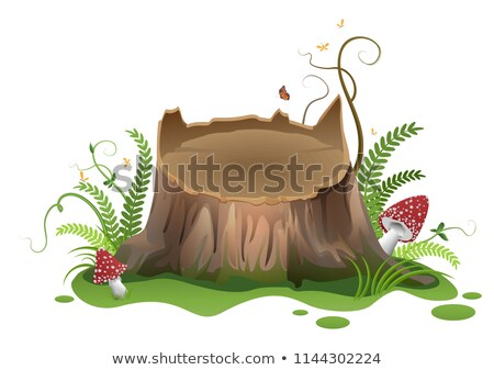 wooden vector cartoon stump and amanita mushrooms stock photo © orensila