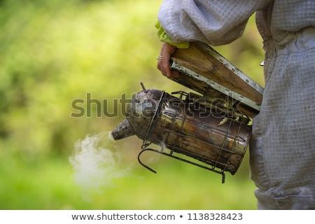 Old bee smoker, Beekeeping tool, Sring in an apiary Stock photo © FreeProd