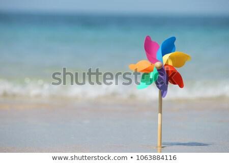 красочный Windmill игрушку изолированный белый лет Сток-фото © ElaK