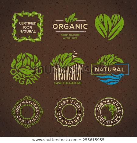 Természetes bio bioélelmiszer izolált fehér háttér Stock fotó © robuart