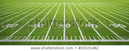 american football field stock photo © superzizie