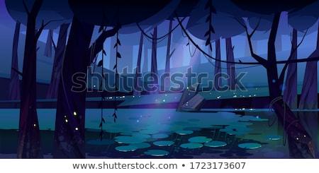 Staw lasu scena noc ilustracja drewna Zdjęcia stock © colematt