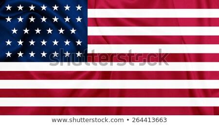 Waving Union Flag (1861-1863) Stock photo © nazlisart