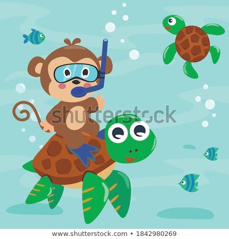 Maymun dalış gölet örnek dizayn sanat Stok fotoğraf © colematt