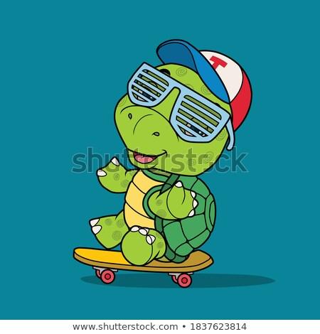 Schildpad spelen skateboard natuur illustratie kunst Stockfoto © colematt