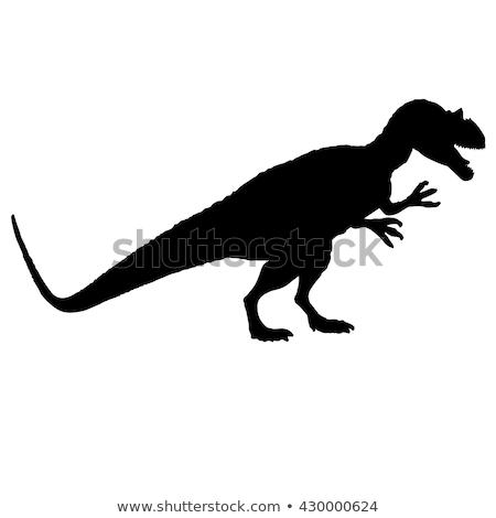 Сток-фото: силуэта · Динозавры · белый · иллюстрация · природы · фон