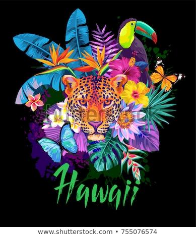 Aloha Hawaii, word on palm leaves, exotic flowers. Vector illustration. Stock photo © ikopylov