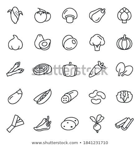 Poireau oignon icône ombre réflexion design Photo stock © angelp