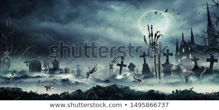 Halloween grób dynia uroczystości cmentarz szkielet Zdjęcia stock © furmanphoto