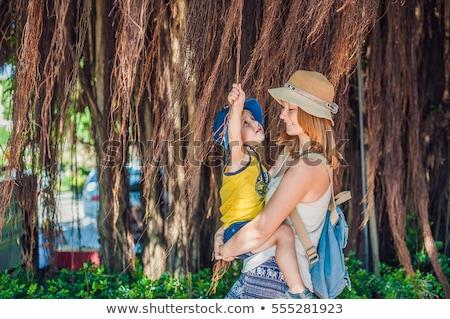 ママ ベトナム 美しい ツリー ストックフォト © galitskaya