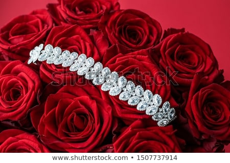 Luxe diamant bijoux bracelet roses rouges fleurs Photo stock © Anneleven