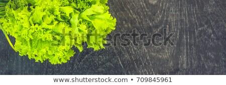banner variety of fresh organic herbs on an old wooden background long format stock photo © galitskaya