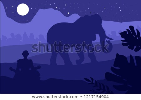 Indian tropical landscape with elephant and monk Stock photo © barsrsind