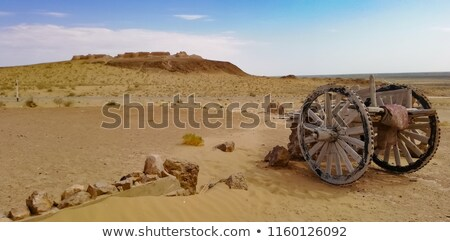 Deve karavan muhteşem ipek yol çöl Stok fotoğraf © anbuch