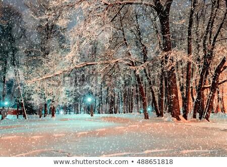 Snow-covered city street under snowfall Stock photo © robuart
