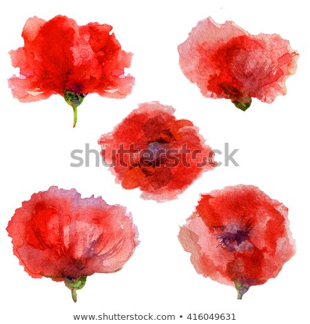 Red watercolor flowers with stalk Stock photo © shawlinmohd