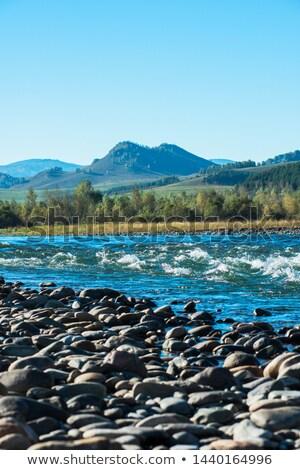 Hızlı dağ nehir su dağlar sibirya Stok fotoğraf © olira