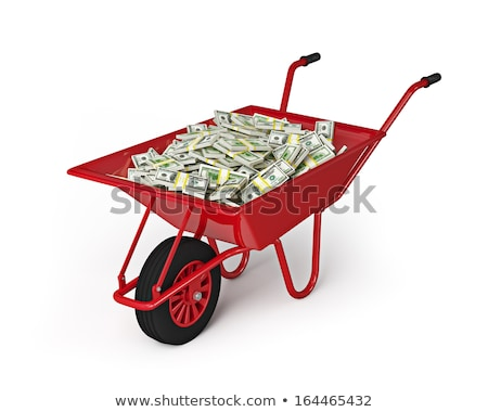 Roue plein dollars isolé blanche richesse Photo stock © dmitry_rukhlenko