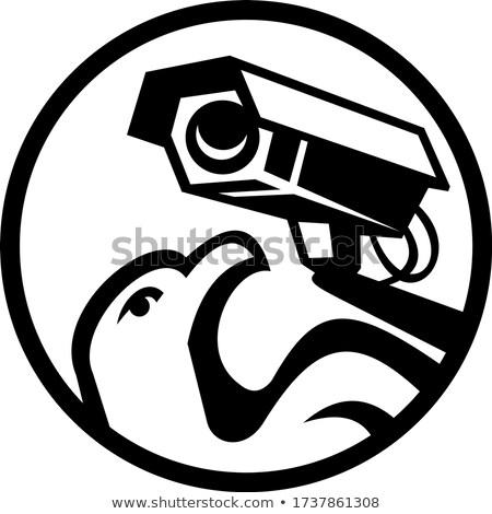 Sas biztonság megfigyelés kamera kör feketefehér Stock fotó © patrimonio