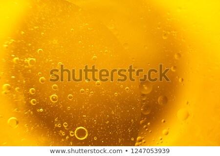Cam soğuk bira zeytin yeşil meyve Stok fotoğraf © inaquim