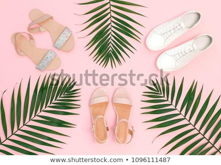 Zomerschoenen meisje vrouwen Blauw benen schoen Stockfoto © phbcz