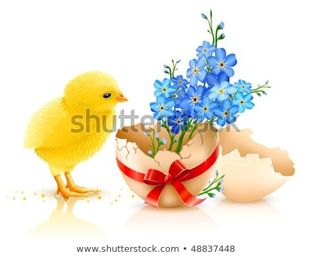 broken egg shell with red bow and forget me not flowers stock photo © loopall