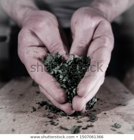 preparazione · chef · mano · nero · alimentare · cucina - foto d'archivio © photography33
