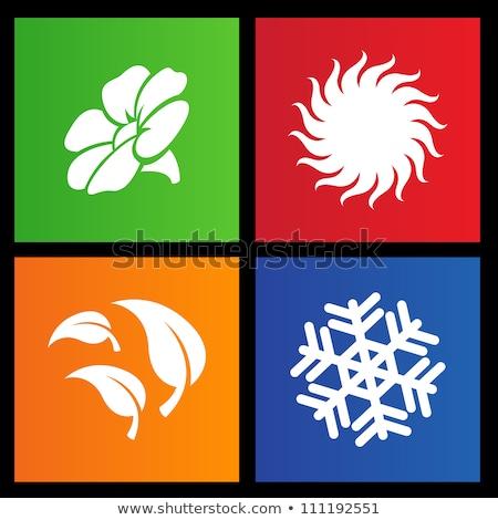 Metra stylu cztery pory roku ikona kwiat charakter Zdjęcia stock © cidepix