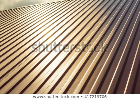 Roof covered with galvanized iron Stock photo © pzaxe