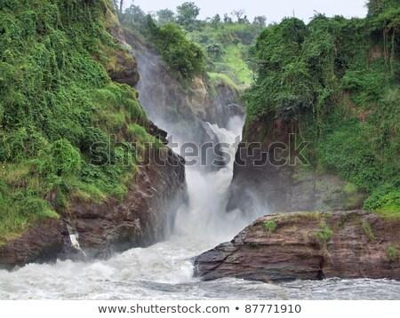 raging torrent at Murchison Falls Stock photo © prill