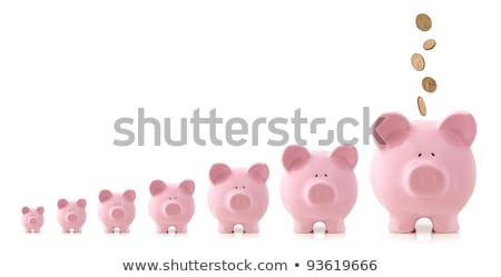 tirelire · rangée · affaires · argent · maison · fond - photo stock © 4designersart