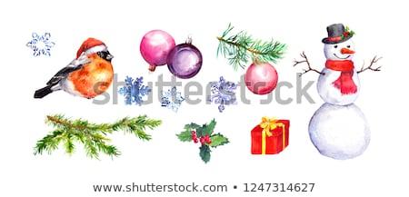 Colore vischio nice Natale sfondo segno Foto d'archivio © jonnysek