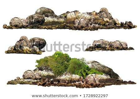 árvore · mar · árvores · casas · reflexão - foto stock © Laks