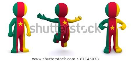 3D bandeira Camarões isolado Foto stock © Kirill_M