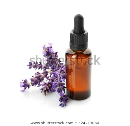 Aromatisch lavendelolie geurig object geïsoleerd witte Stockfoto © juniart